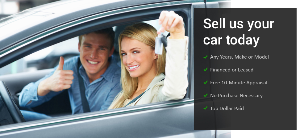 cash-for-used-cars-auckland-ipshot
